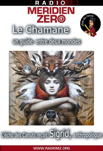 edc 17 chamanisme